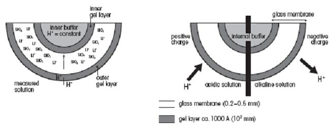 Labpro Types Of Ph Meter Electrode